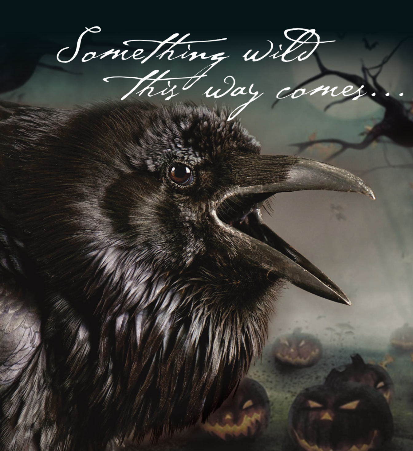 Raven - Something Wild